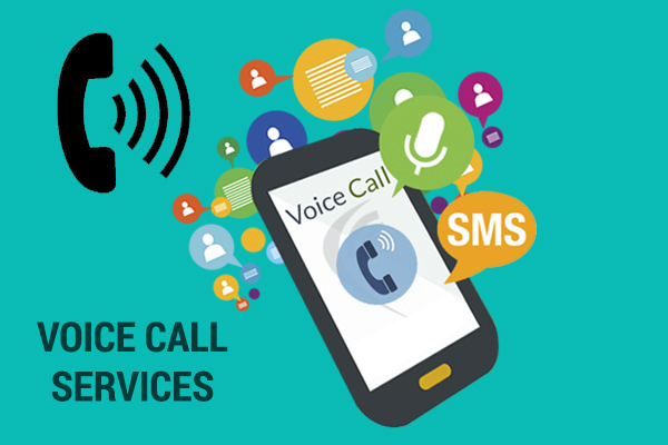 Voice Call Services